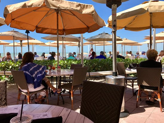 Turtle Club Naples Fl