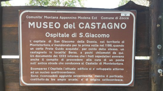 Risultati immagini per museo del castagno