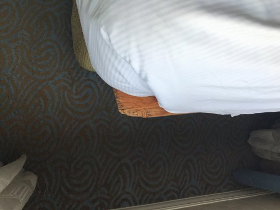 Washington Hilton Both Beds Had Sheets Of Ply Wood Sticking Out Them Between The