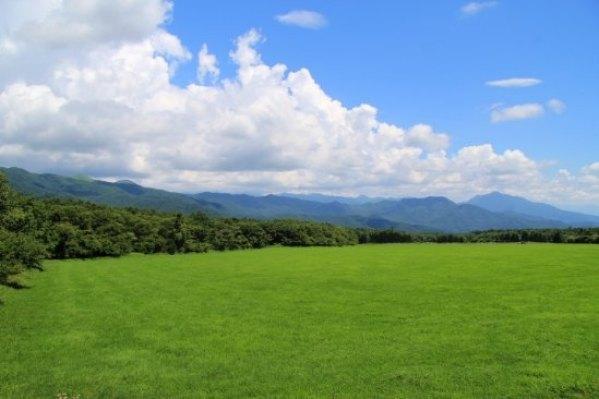 「清里高原」の画像検索結果
