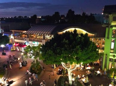 Image result for downtown disney view grand californian