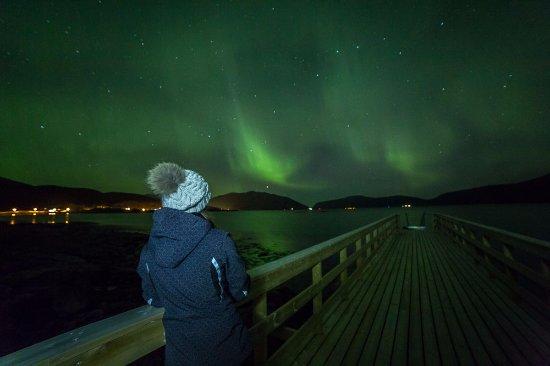 Northern Lights Last Minute Deals