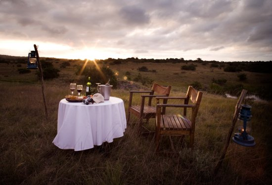 Hlosi Game Lodge UPDATED 2018 Prices Amp Reviews Amakhala Game Reserve South Africa TripAdvisor