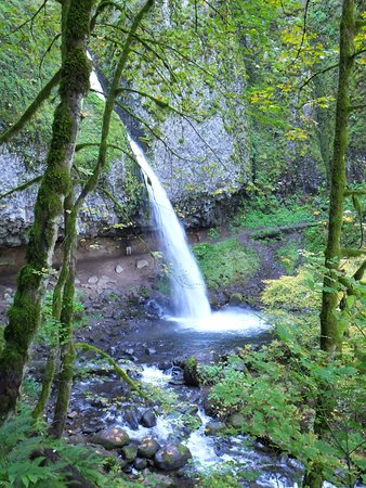 Ponytail Falls Cascade Locks 2019 All You Need To Know