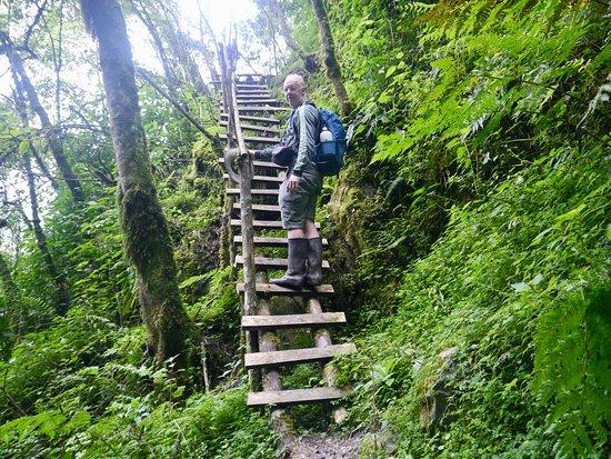 ルウェンゾリ山地国立公園: 画像