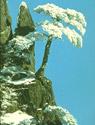 Gunung Huangshan