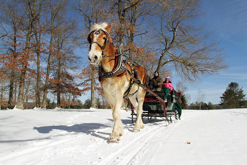 Deep Creek sleigh rides