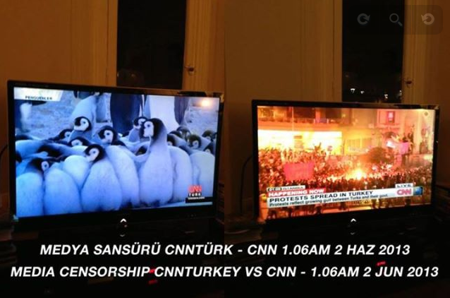 penguins CNN