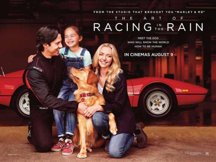 Art-Racing-Rain