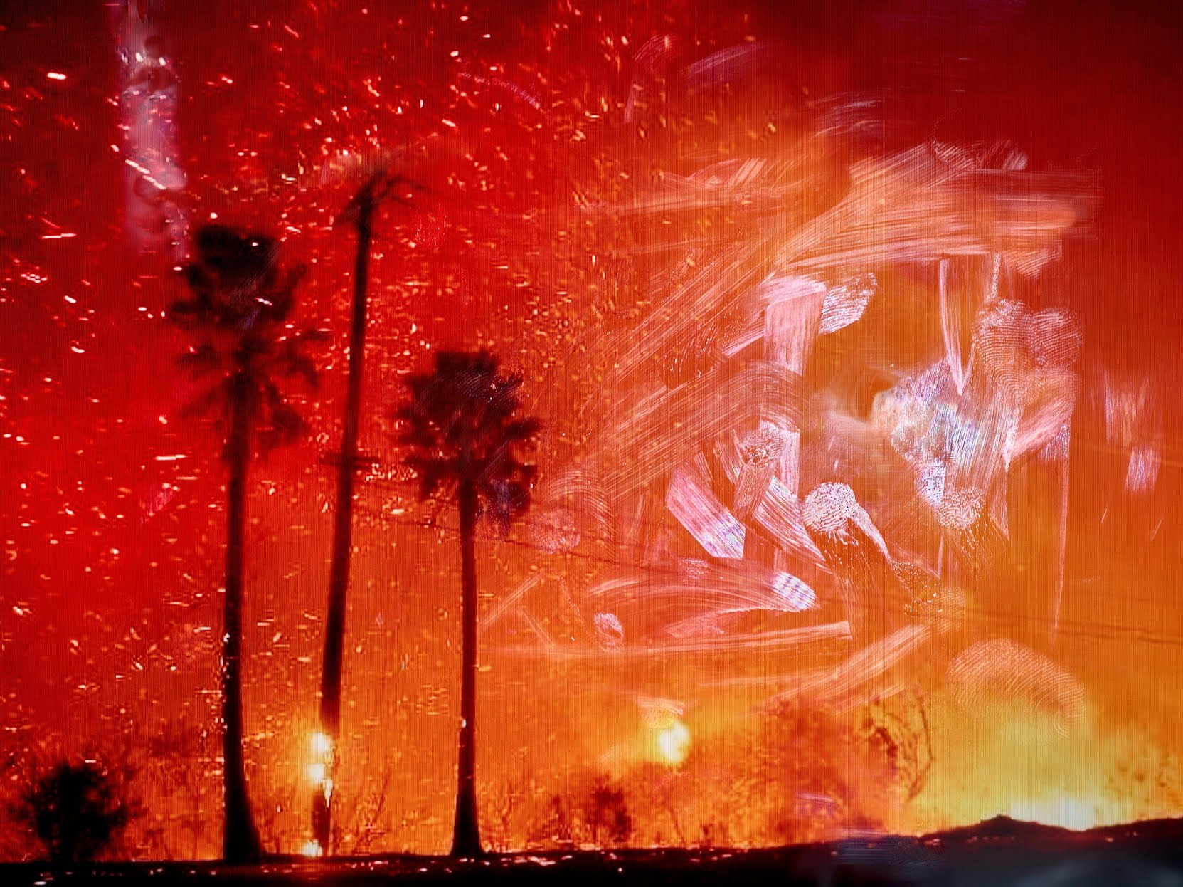 Palm trees with a fire in the background.