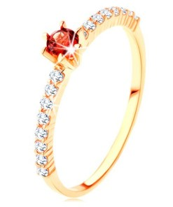 Bijuterii eshop - Inel din aur 375 - linii de zirconii transparente, garnet rosu rotundaproeminent GG115.16 - Marime inel: 50