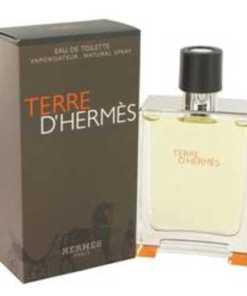 Terre D'hermes Cologne by Hermes, 100 ml Eau De Toilette Spray for Men