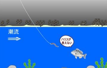 魚のえさの見え方