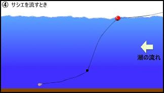 ハワセ釣りの流し方4