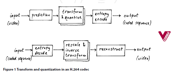 Transform and quantization