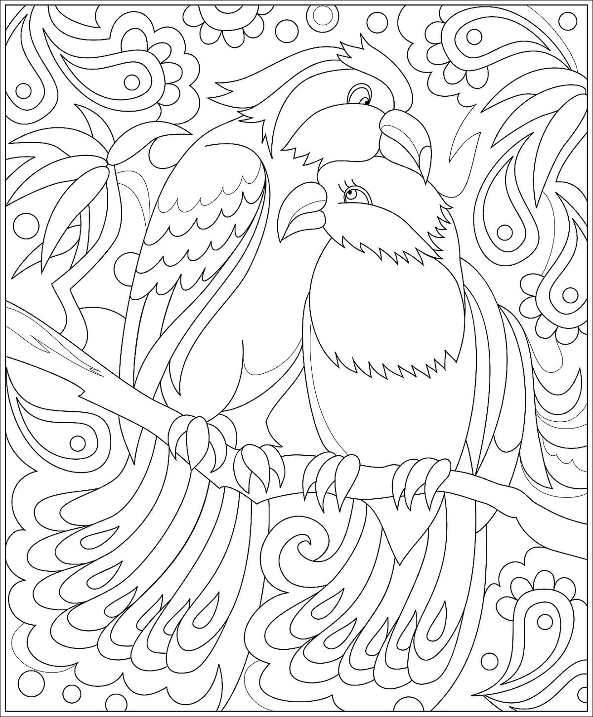 Bird Coloring Pages For Kids Fun Printable Coloring Pages