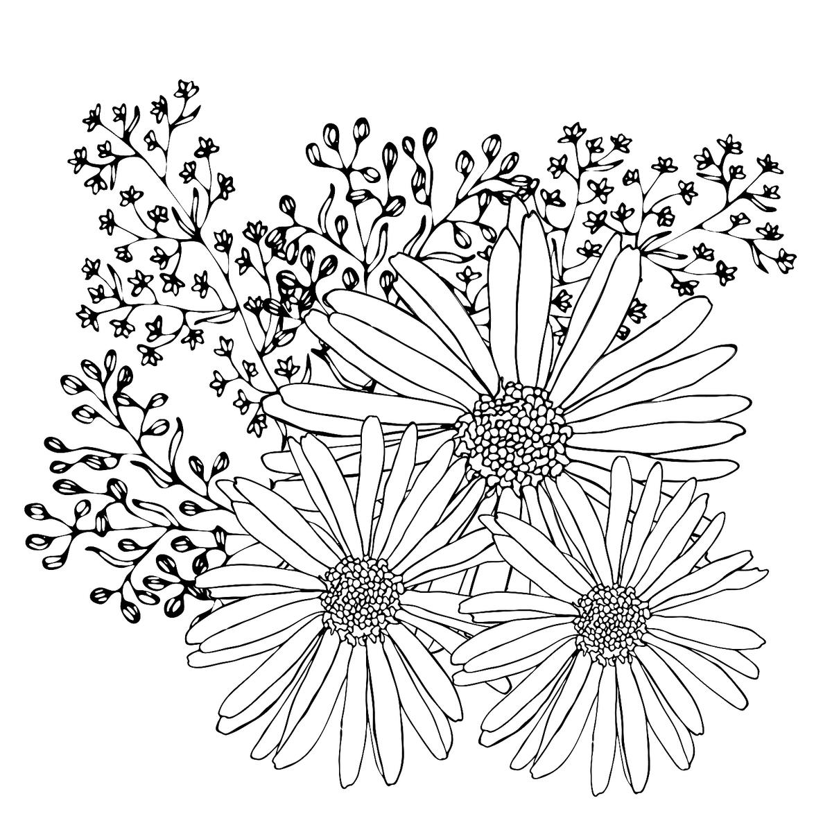 Flowers Coloring Pages 10 Free Fun Printable Coloring Pages Of Flowers Printables 30seconds Mom