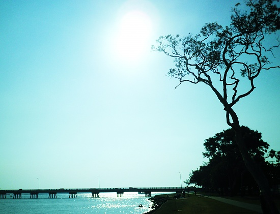 Bridge to Bribie on 365 Project