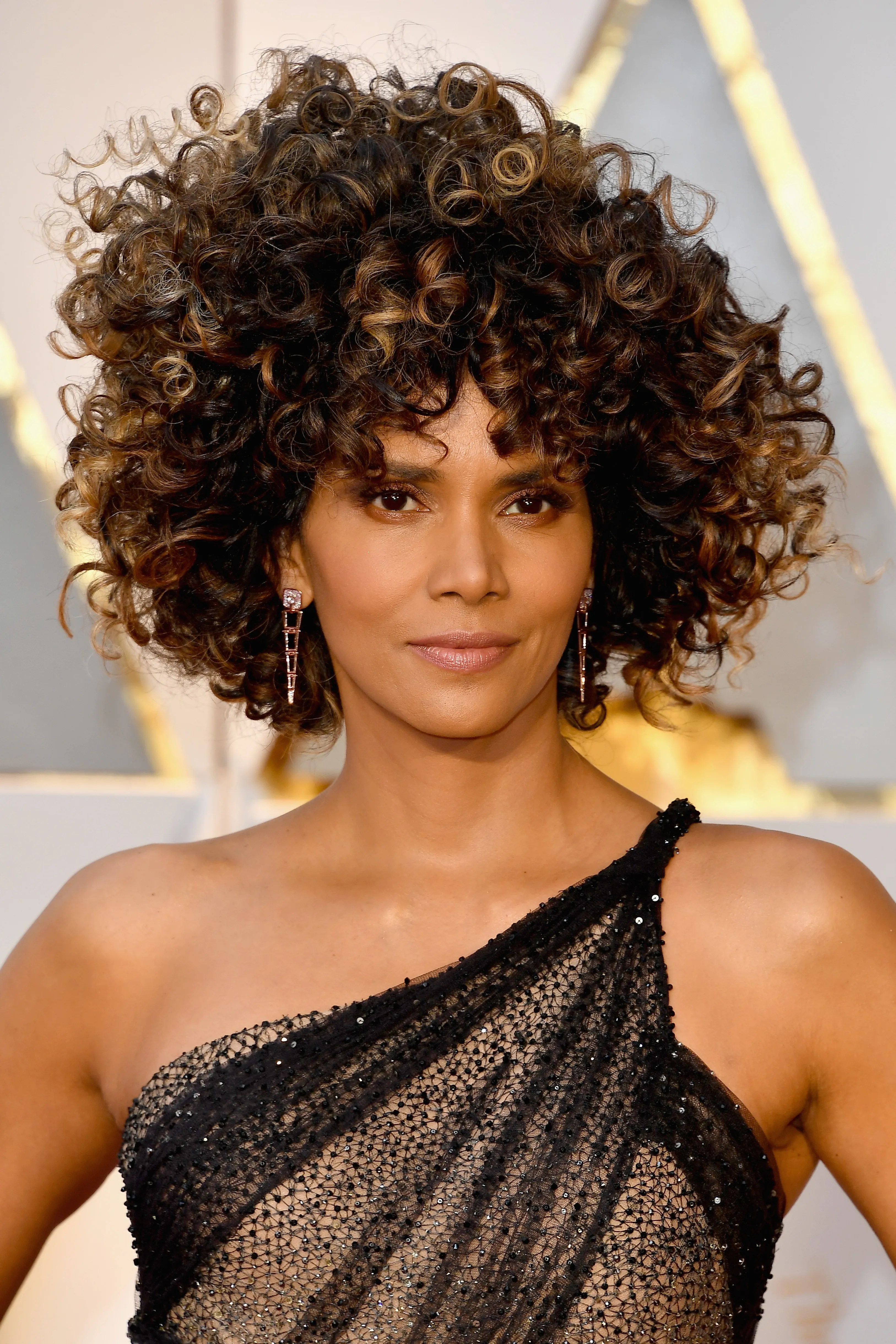 Oscars 2017 Halle Berry Debuts Voluminous Hairstyle on the Red