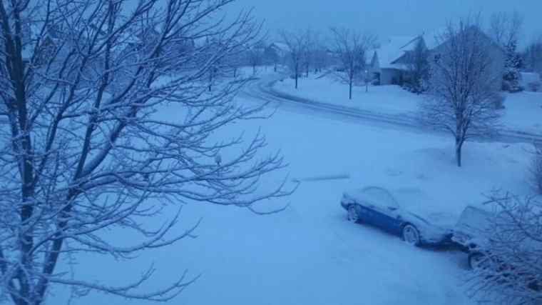Image result for things in the snow