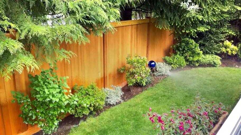 Design My Backyard