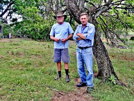 WARNING: Retired vet Tony Moore and Mummulgum farmer Tom Amey, president of the Northern Rivers Wild Dog Control Association, are concerned abut the how brazen these feral animals are becoming.