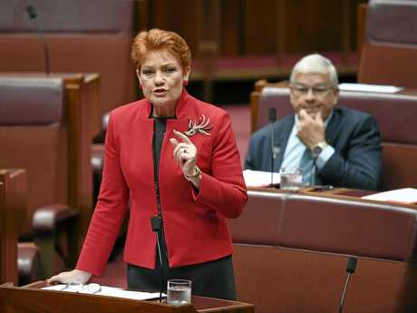 One Nation Senator Pauline Hanson speaks at Parliament House in Canberra in November.