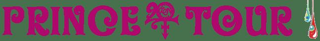 20Ten Tour (princevault.com)
