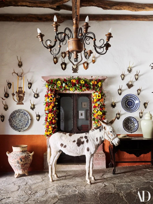 The family burro Apache.