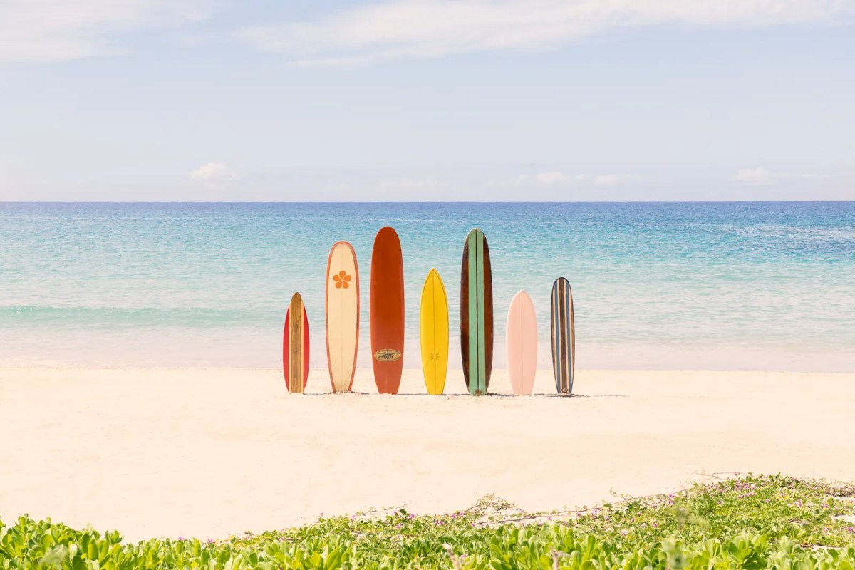 surf boards in the sand