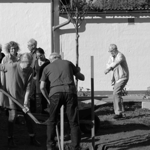 The friends plant a walnut tree at the founding day in the wolff studio garden