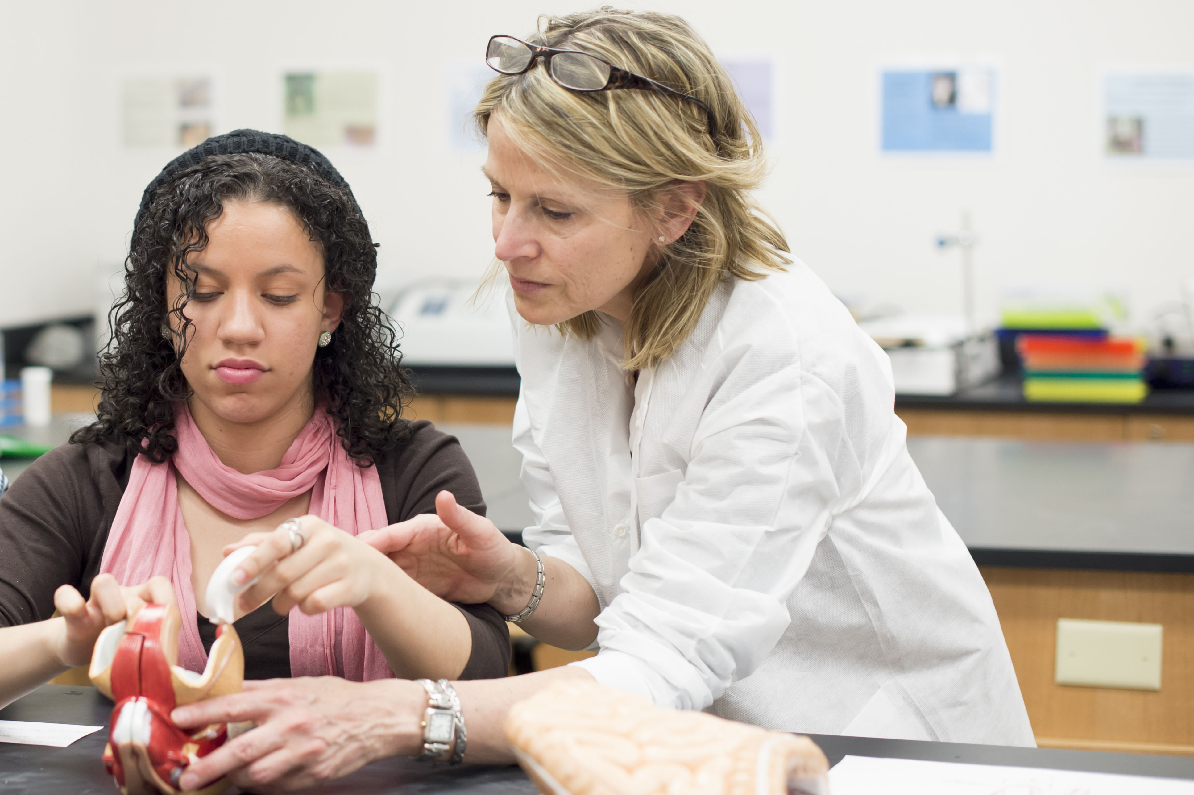 6 Questions To Ask Your Premed Adviser
