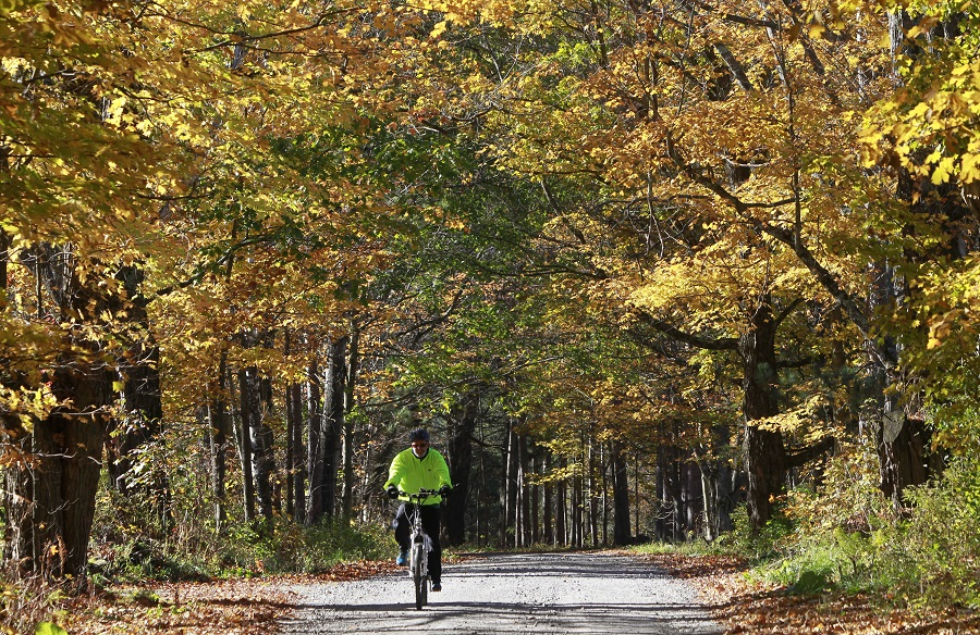 Riding under a canopy of fall leaves in Vermont. (AP Photo/Toby Talbot)