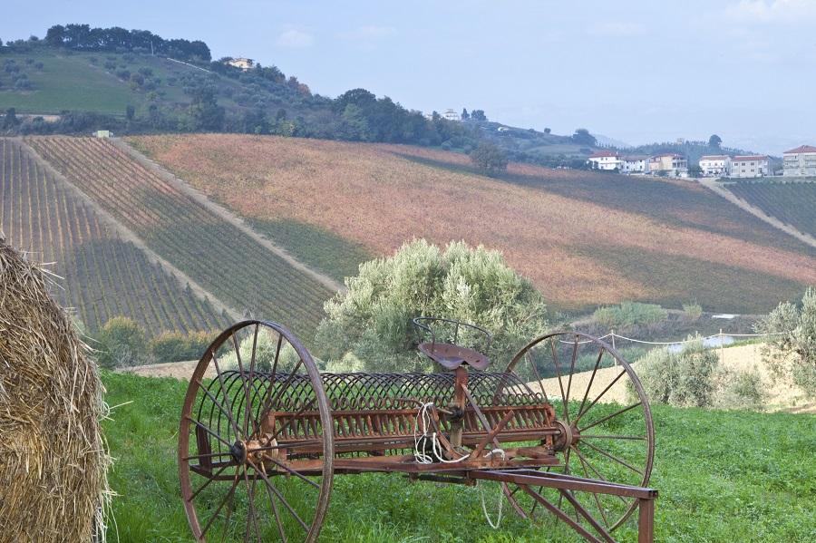 Italian countryside (photo: Getty)