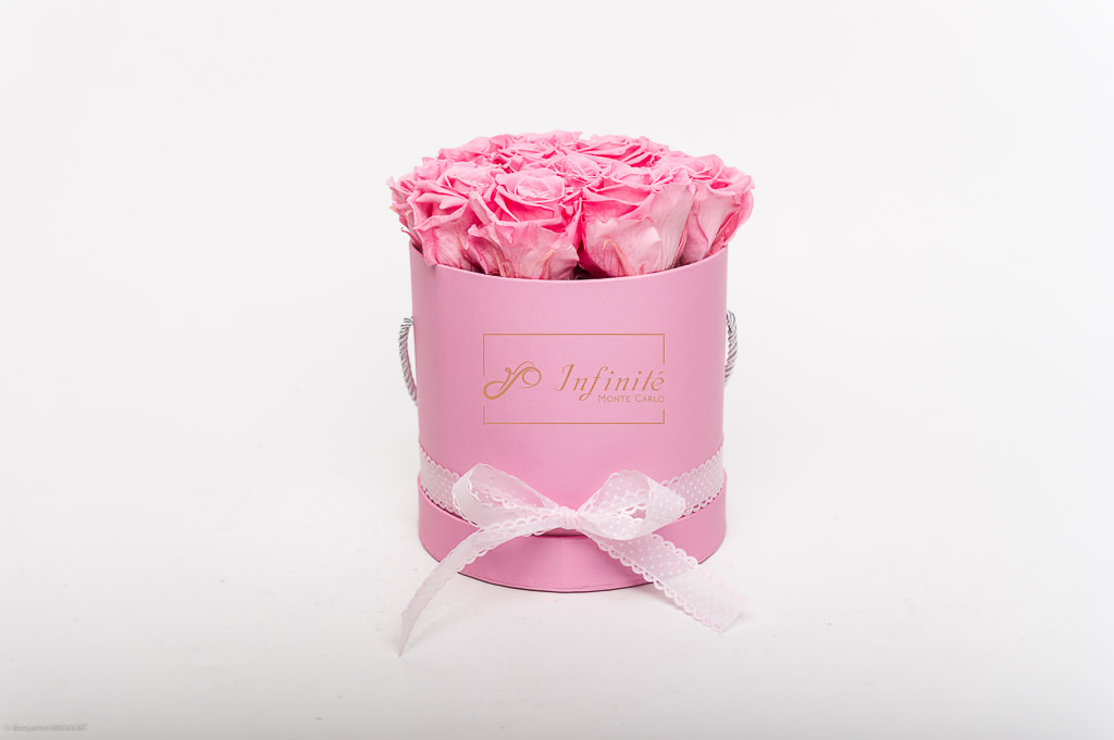 Photo shoot packshot inifinity Monte Carlo pink roses