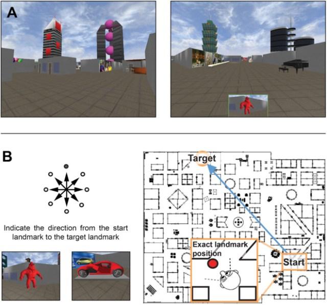 Entorno virtual y prueba de dirección utilizados en el estudio. | NTNU