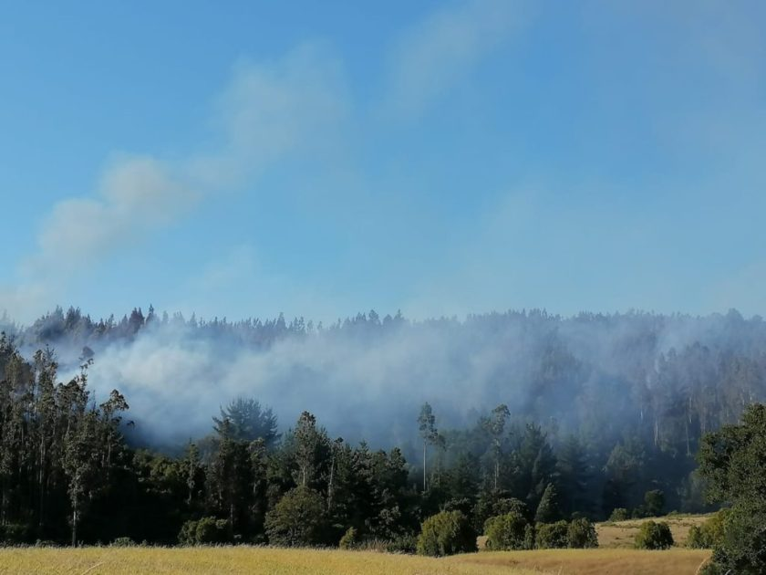 red alert forest fire Temuco