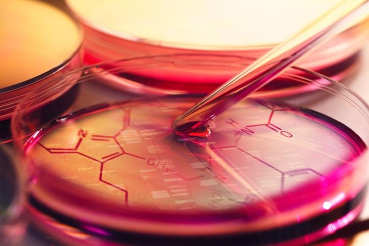 Svensk nanoteknik kan leda till genombrott för stamcellsterapier