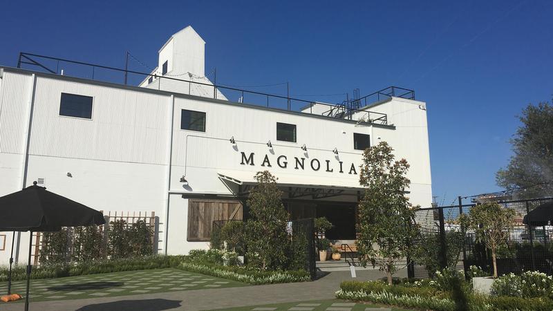 magnolia16