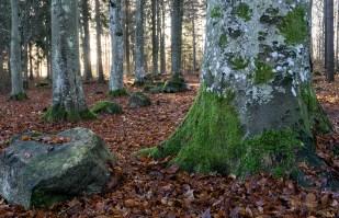 De äro välklädda i Malmslätt - Margareta
