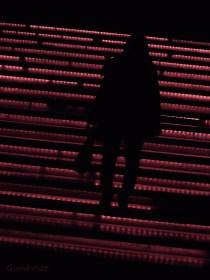 Promenad i natten av Gunbritt