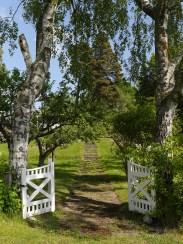 Inbjudande trädgårdsöppning, Sthlm