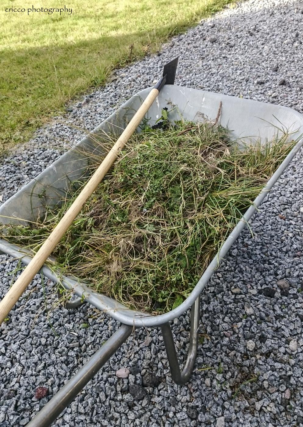 Grusgången rensad från ogräs