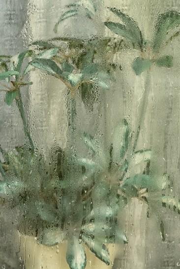 Fuktigt - av Margareta