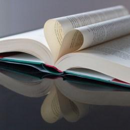 Spegling av bokhjärtat - av Malin