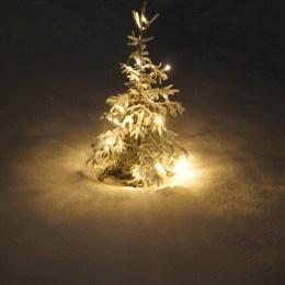 24 december - Ewa