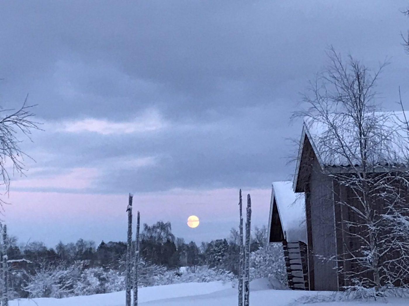 31 december - Cricco nästan fullmåne