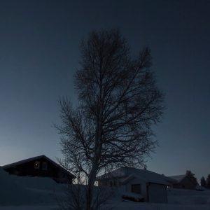 Hus i skymningsljus - Cricco