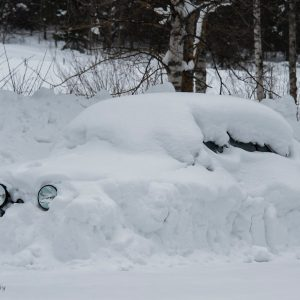 Snö och vinter - Cricco