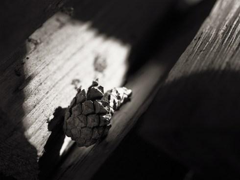 Ljus och skuggor av Gunbritt